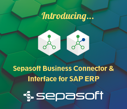 Introducing Business Connector and Interface for SAP ERP